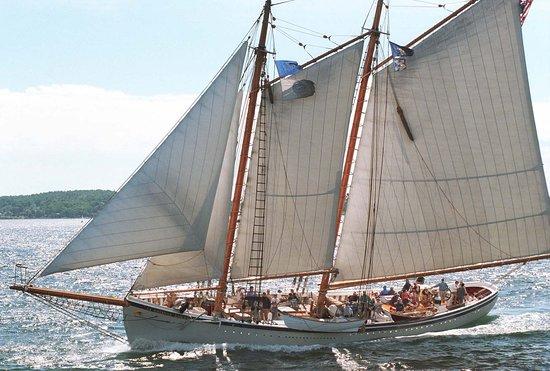 Schooner American Eagle: Sailing up Penobscot Bay