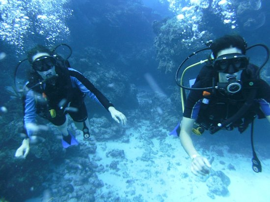 Deep Life Divers: PICT5932 (1)_large.jpg