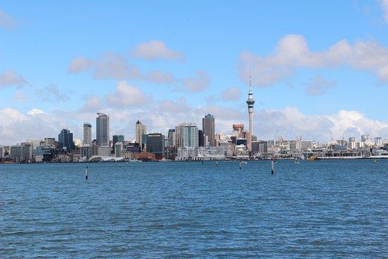 Cyril Bassett Lookout CV: Auckland