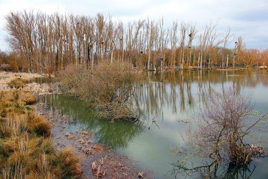 Parque Salburua