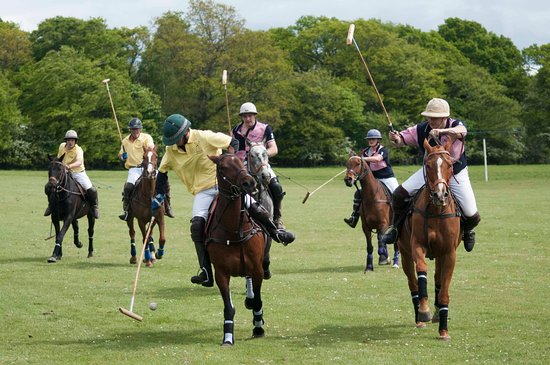 Edinburgh Polo Club