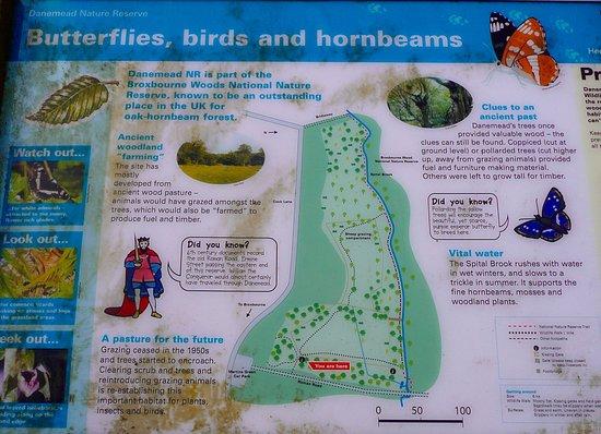 Danemead Nature Reserve