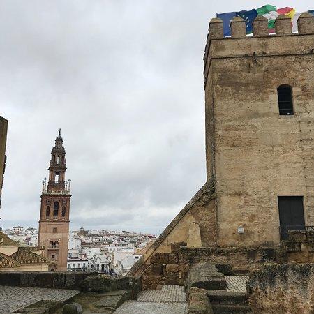 Alcazar de la Puerta de Sevilla: photo9.jpg