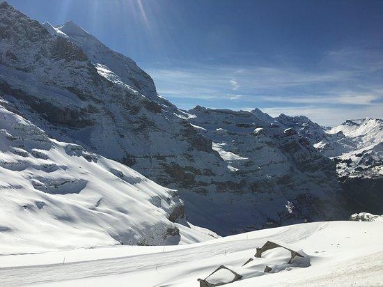Jungfraujoch: View on the train ride