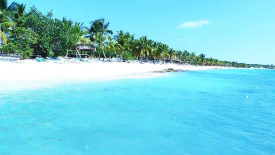 Caribbean Route Saona Island Beach