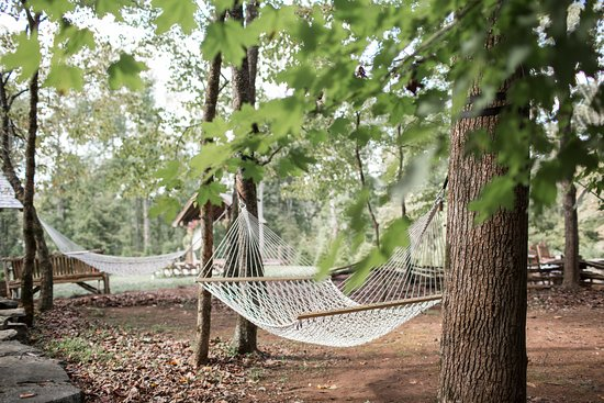 Dancing Bear Lodge: Relax in one of our hammocks