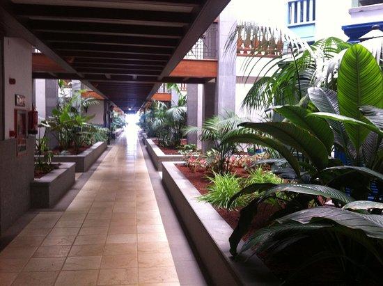 Princesa Yaiza Suite Hotel Resort: C wing lower walkway and garden. Suites on either side