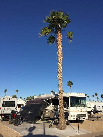 Mesa Spirit RV Resort: Home for a month!