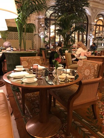 Palm Court: photo2.jpg
