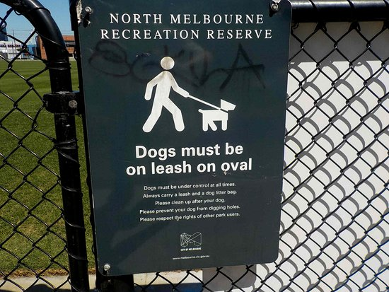 North Melbourne Recreation Reserve: Dog rules