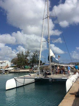 Tiami Catamaran Sailing Cruises: Our catamaran that we sailed on