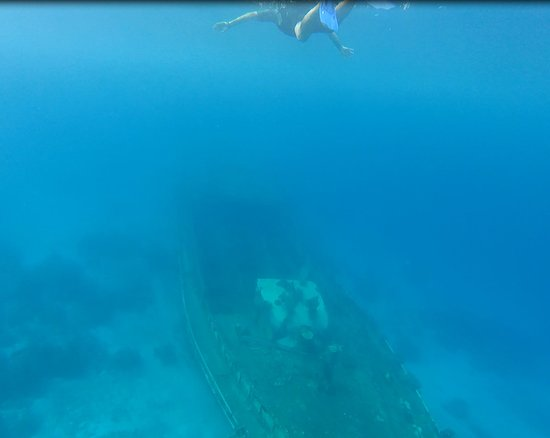 Gizo, Solomon Islands: Snorkling over the resort sunken ship, just out in front of the bungalows