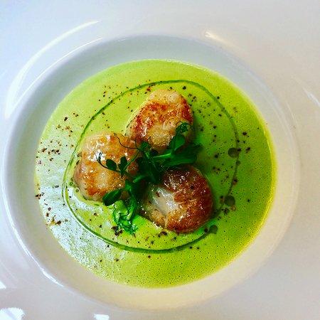 Scallops, green pea