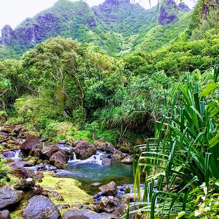 Limahuli Garden And Preserve Hanalei 2018 All You Need