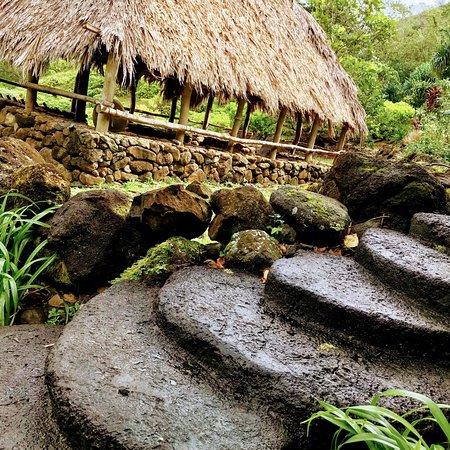 Limahuli Garden And Preserve Hanalei Hi Updated 2018