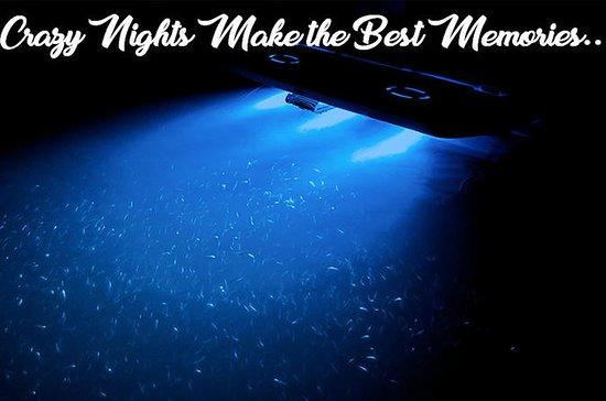 Night Time Adventure