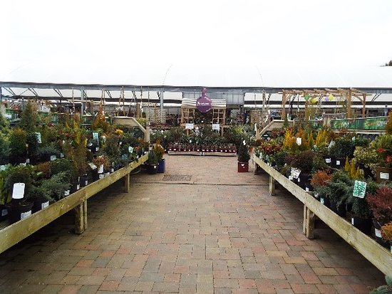‪Scotsdales Garden Centre‬