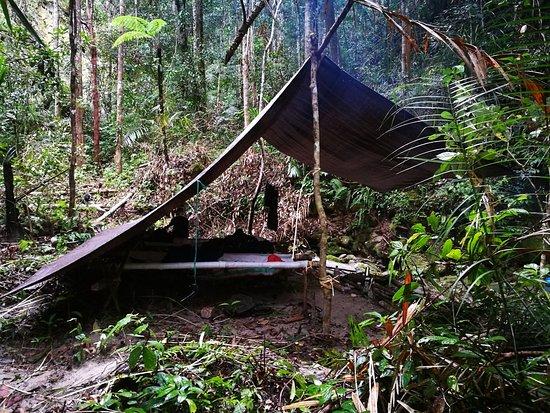 Taman Nasional Lore Lindu: Self made tent 1
