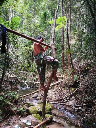 Taman Nasional Lore Lindu: Self made tent 2