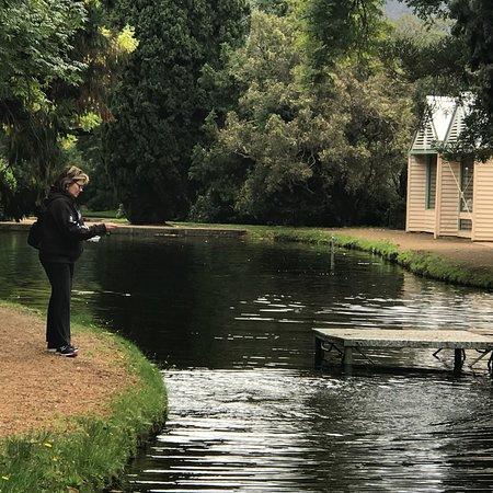New Norfolk, Avustralya: photo4.jpg