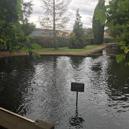 New Norfolk, Australia: photo5.jpg
