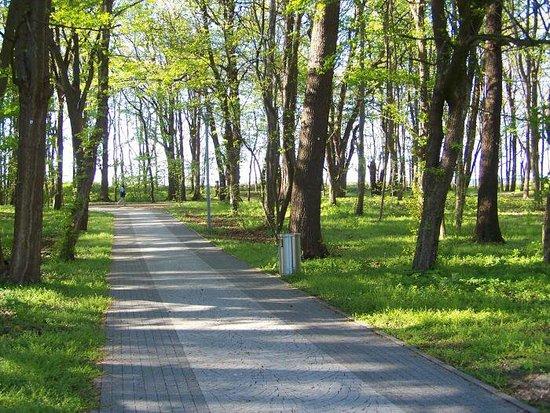 Stefan Zeromski Park