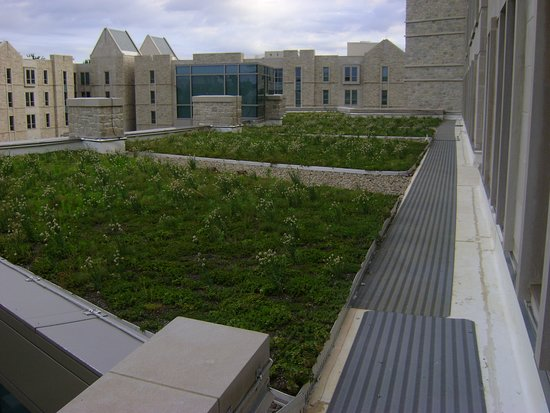 Indiana University Green Roof At Union Street Center Apartments