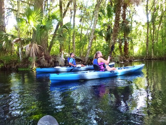 Kayak Florida (Silver Springs) - Updated 2019 - All You Need