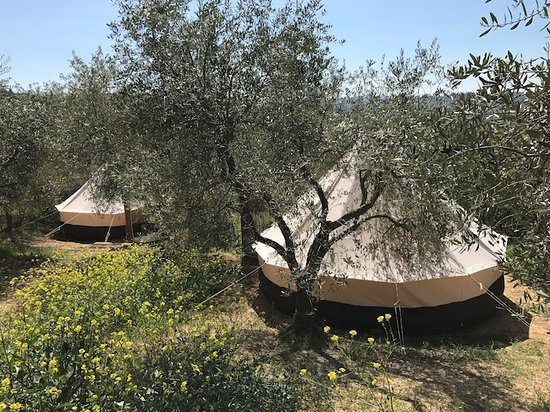 Petroio, Italy: Family Tents