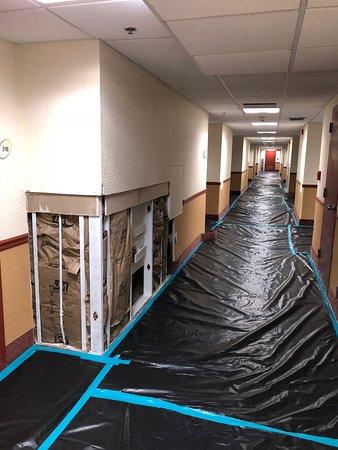 La Quinta Inn & Suites Coral Springs University Dr : 3rd floor hallway near elevator