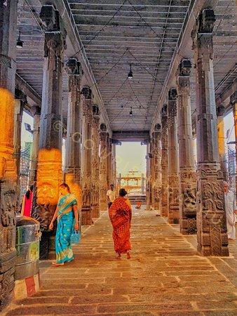 Sri Parthasarathy Temple : IMG_20180308_174000-01-1051x1401_large.jpg