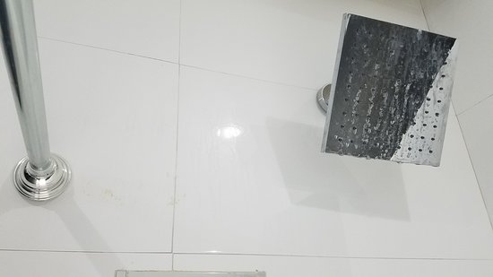 Are Those Boogers On The Wall By The Rod Remodeling Goop Ew - Bathroom remodel st augustine