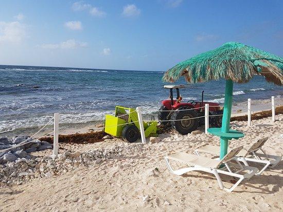 Puerto Yucalpeten, México: 20180311_085209_large.jpg