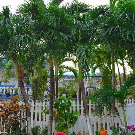 Culebra International Hostel Photo