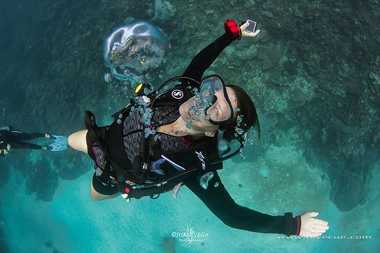 Colombia Underwater Expeditions