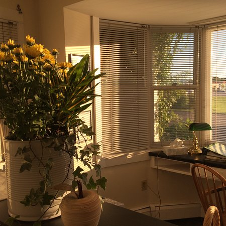 Banbridge Inn: Sunshine in the Office