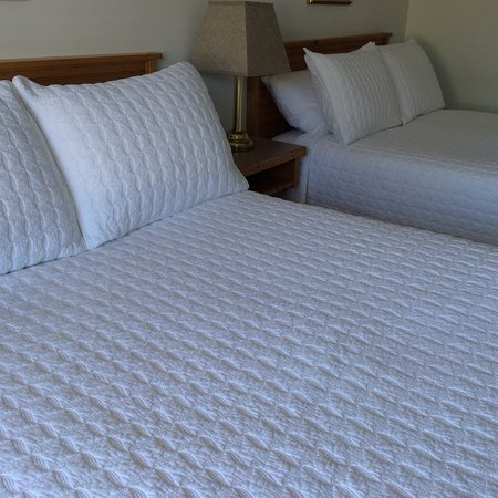 Banbridge Inn: Standard Room featuring the simple things: 2 Double Beds with 100% cotton matelasse bedding.