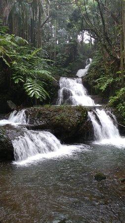 Papaikou, Havaí: watefall