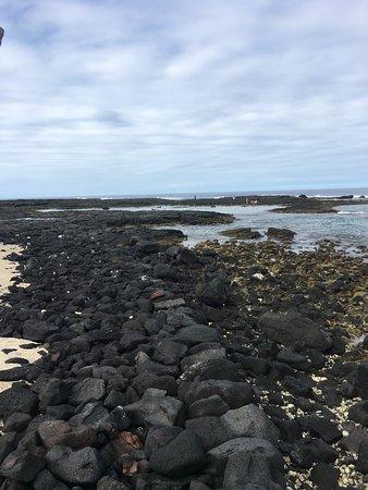 Honaunau, HI: Lava Rocks