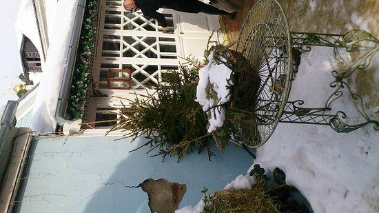 Музей коломенской пастилы: DSC_7759_large.jpg