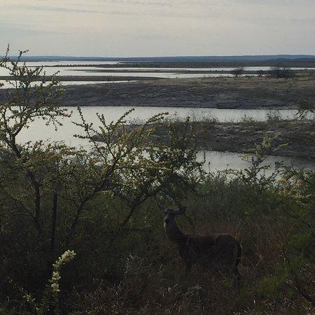 Del Rio, تكساس: photo0.jpg