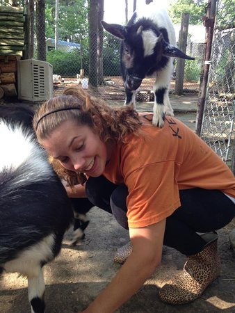 DEW Haven: While training as an intern you tend to bond with the animals while you clean their enclosures.