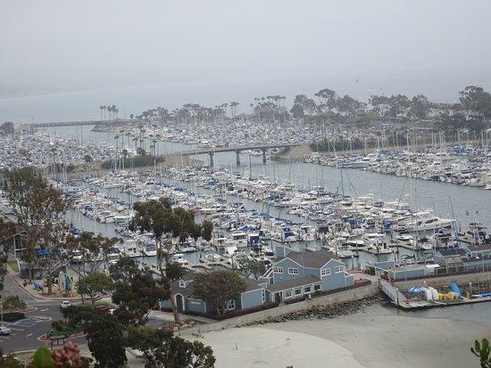 Dana Point, كاليفورنيا: VIew of harbor marina from on-high