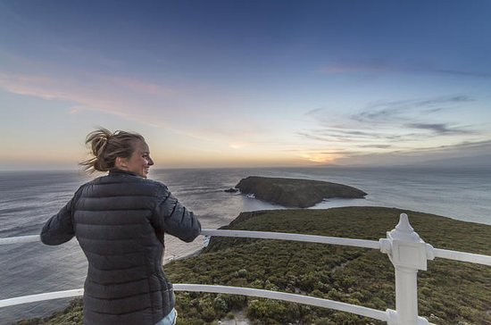 Bruny Island with Lighthouse Tour and...