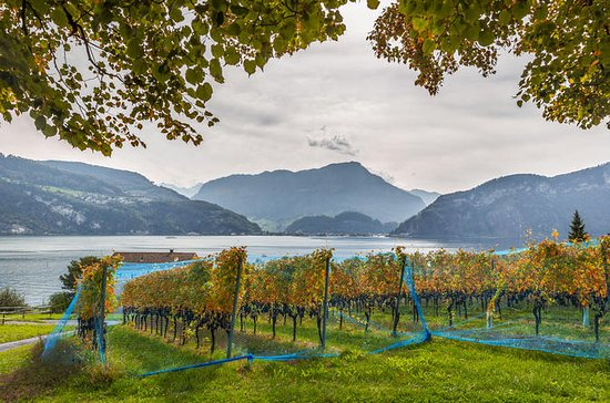 Lucerne Wine Tasting Tour by Lake...