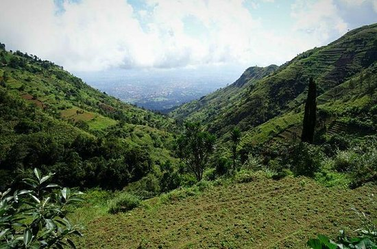 Hiking to Uluguru Mountains-Choma...