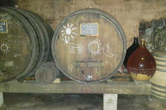 Wine tasting tour to Karst wine region