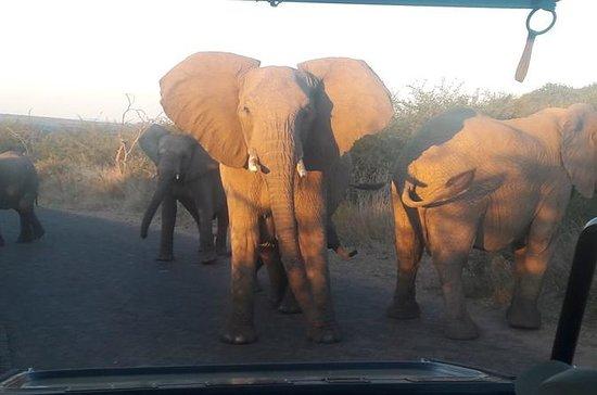 Safari en tente de 2 jours au...