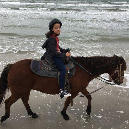 Horseback Riding Tours In Orange County