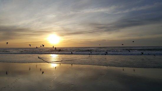 Winchester Bay, Oregón: Beach...just a few mins away